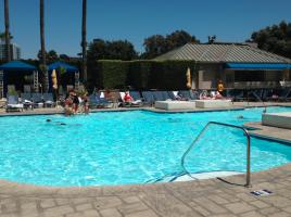 Ritz-Carlton Marina Del Rey Pool
